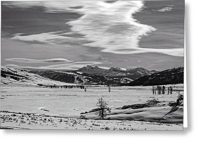 Lamar Valley In Yellowstone Greeting Card by L O C