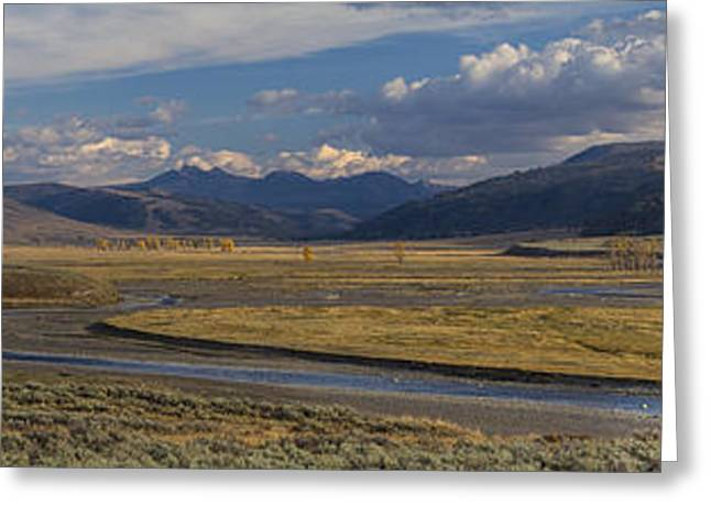 Lamar Valley Panorama Greeting Card by Mark Kiver