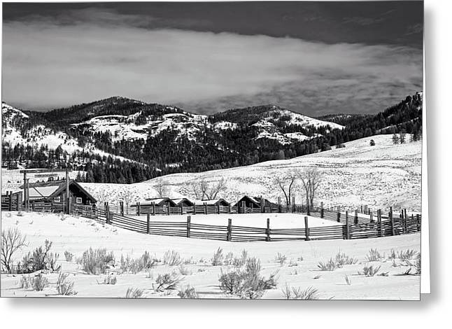 Lamar Valley Ranger Station And Ranch Greeting Card by L O C