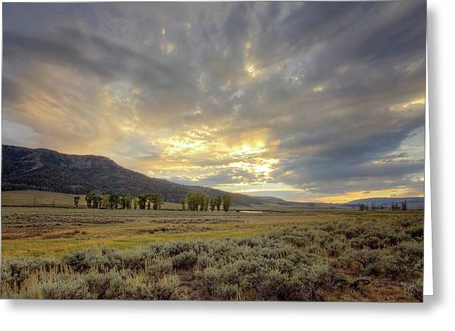 Lamar Valley Sunset Greeting Card