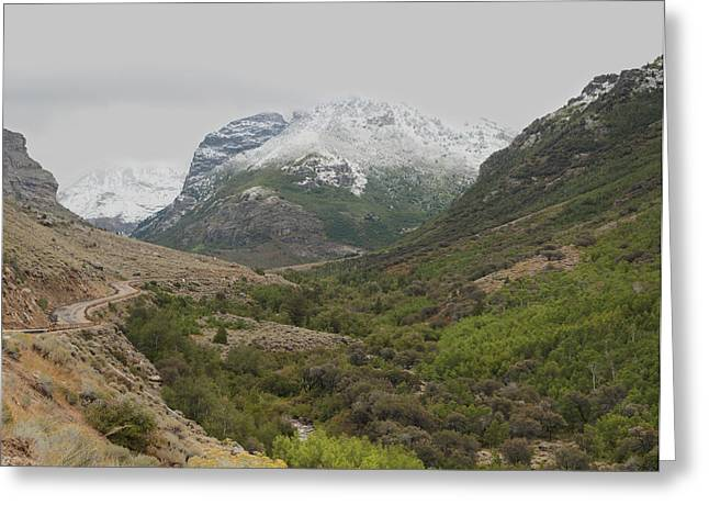 Greeting Card featuring the photograph Lamoille Canyon by Daniel Hebard