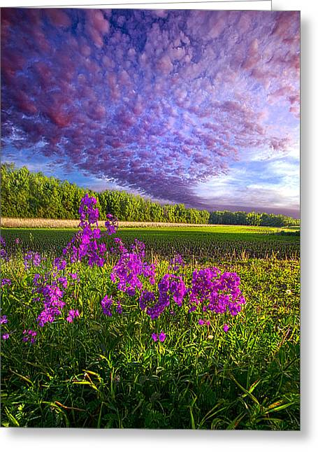 L'amore De Ma Vie Greeting Card by Phil Koch