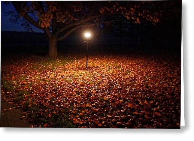 Greeting Card featuring the photograph Lamp-lit Leaves by Lars Lentz