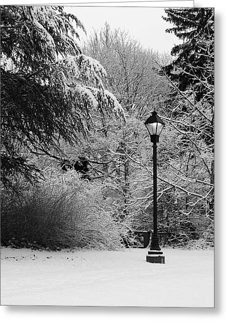 Lamp Post In Winter - B/w Greeting Card by William Selander