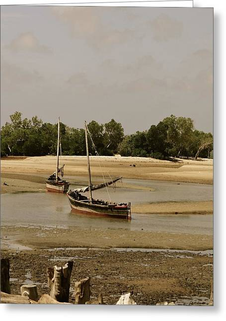 Lamu Island - Wooden Fishing Dhows At Low Tide With Pier - Antique Greeting Card