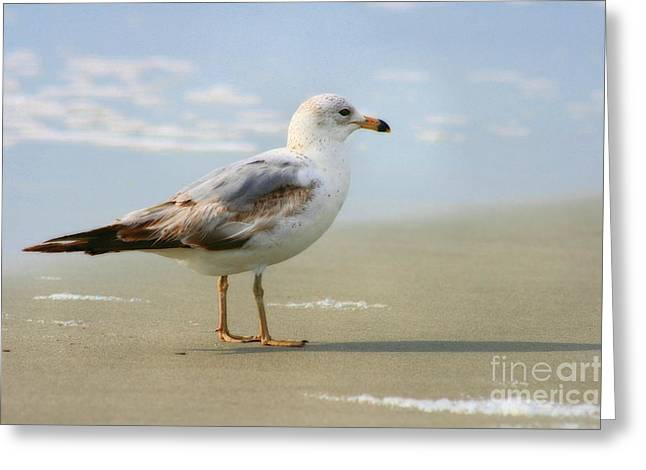 Land Sea And Sky Series Greeting Card by Angela Rath