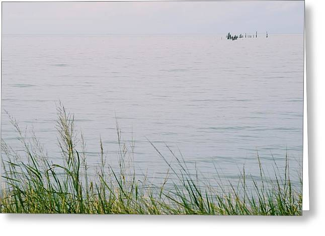 Greeting Card featuring the photograph Land To Sea by Deborah  Crew-Johnson