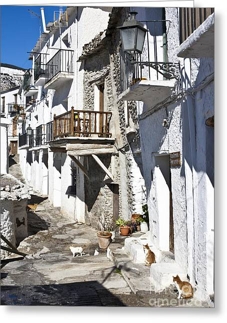 Greeting Card featuring the photograph Street In Capileira Puebla Blanca by Heiko Koehrer-Wagner