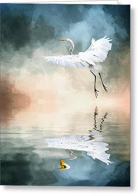 Landing At Dawn Greeting Card by Cyndy Doty