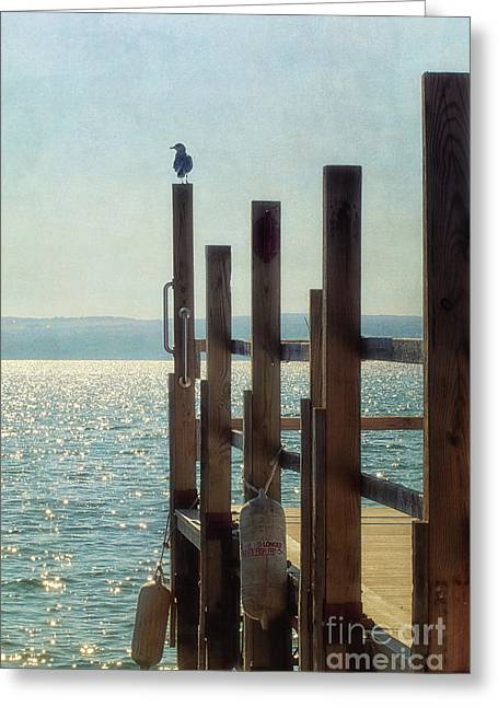 Landing Pier Greeting Card by Alison Sherrow I AgedPage