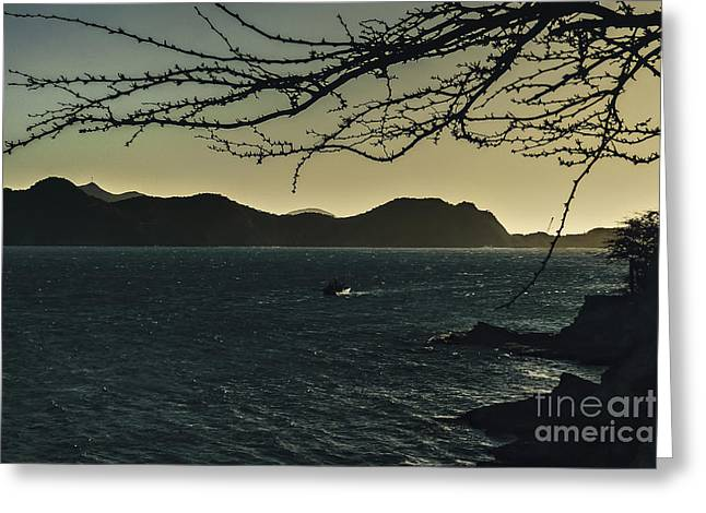 Landscape Aerial View Of Taganga In Colombia Greeting Card by Daniel Ferreira-Leites