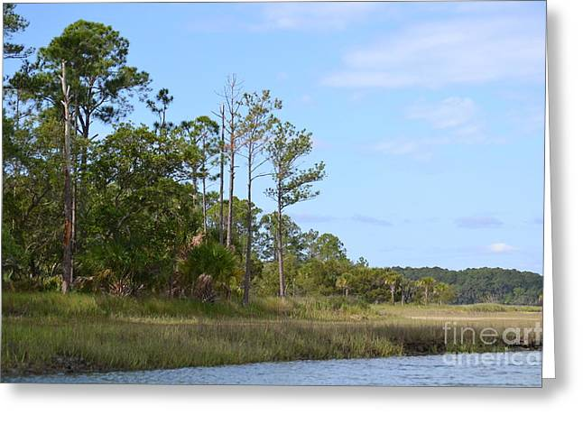 Greeting Card featuring the photograph Landscape And Blue Sky by Carol  Bradley