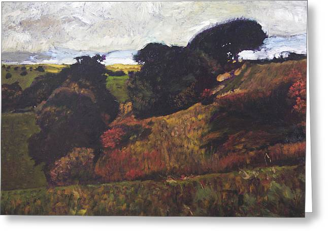 Landscape At Rhug Greeting Card by Harry Robertson