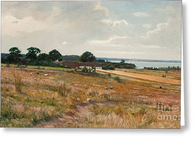 Landscape From The South Of Sweden Greeting Card by Celestial Images