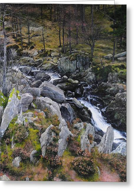 Landscape In Snowdonia Greeting Card by Harry Robertson