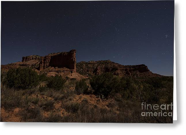 Landscape In The Moonlight Greeting Card by Melany Sarafis