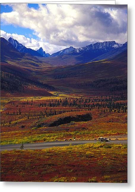Landscape Of Mountains And Wildflowers Greeting Card