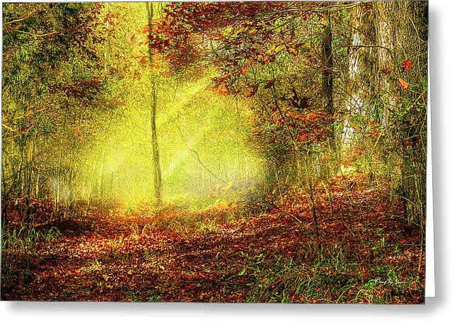 Landscape - Sunbeams - Woodland Trail Greeting Card by Barry Jones