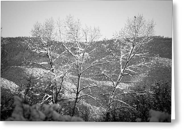 Landscape Taos Nm J10b Greeting Card