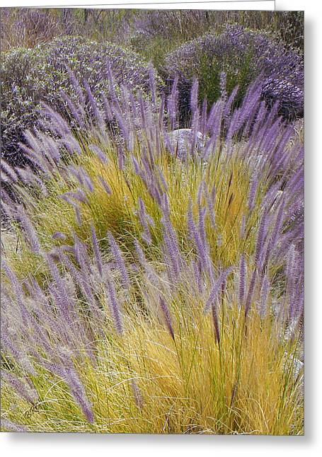 Landscape With Purple Grasses Greeting Card by Ben and Raisa Gertsberg