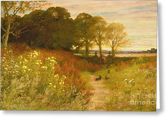 Landscape With Wild Flowers And Rabbits Greeting Card by Robert Collinson