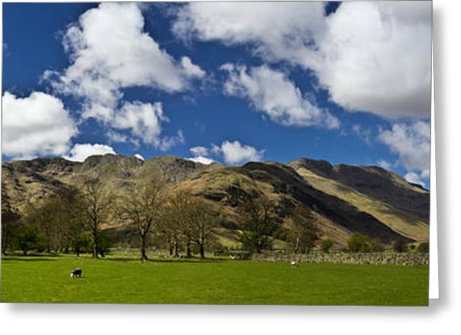 Langdale Panorama Greeting Card by Chris Whittle