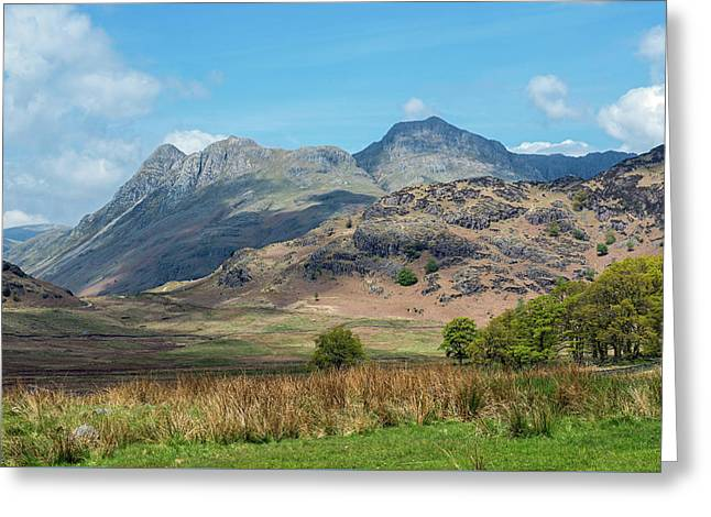 Langdale Pikes From Blea Tarn Greeting Card