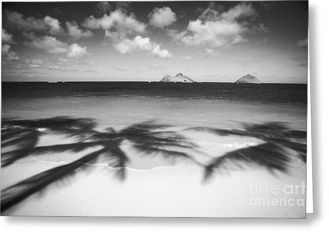 Lanikai Beach - Bw Greeting Card by Dana Edmunds - Printscapes