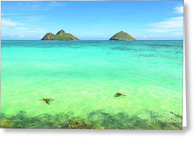 Lanikai Beach Two Sea Turtles And Two Mokes Greeting Card