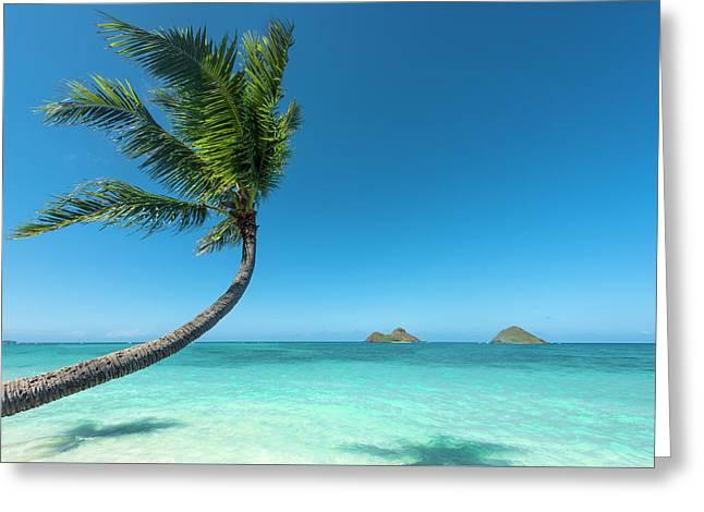 Lanikai Hawaii Greeting Card