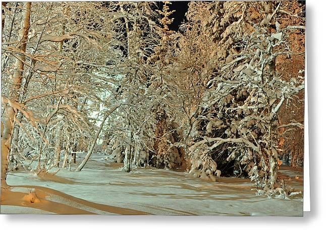 Laplandia Greeting Card by Boris Shekhirev