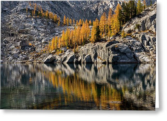 Larch Reflection In Enchantments Greeting Card
