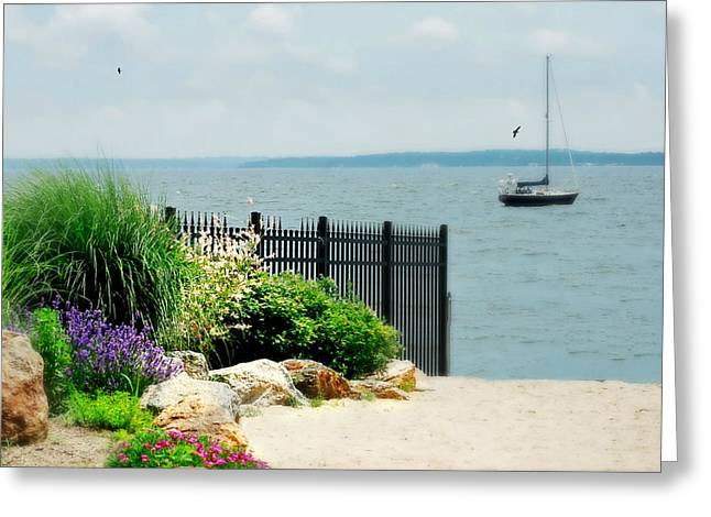 Larchmont Shore Greeting Card by Diana Angstadt
