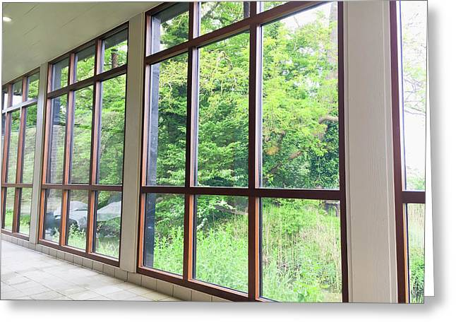 Large Conservatory Windows Greeting Card by Tom Gowanlock