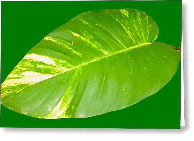 Greeting Card featuring the digital art Large Leaf Art by Francesca Mackenney