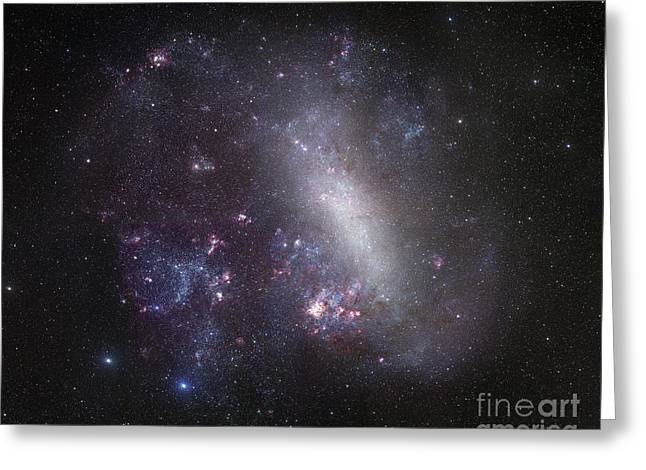 Large Magellanic Cloud Greeting Card by Robert Gendler
