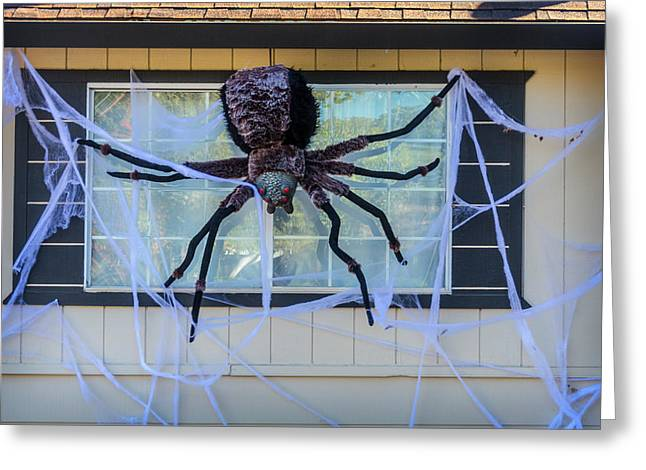 Large Scary Spider  Greeting Card by Garry Gay