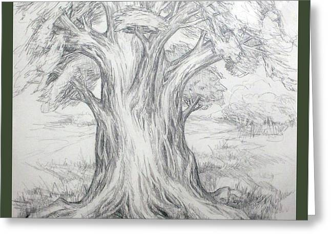 Large Shady Tree Greeting Card by Ruth Renshaw