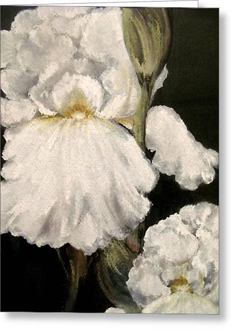 Large White Iris Greeting Card by Carol Sweetwood