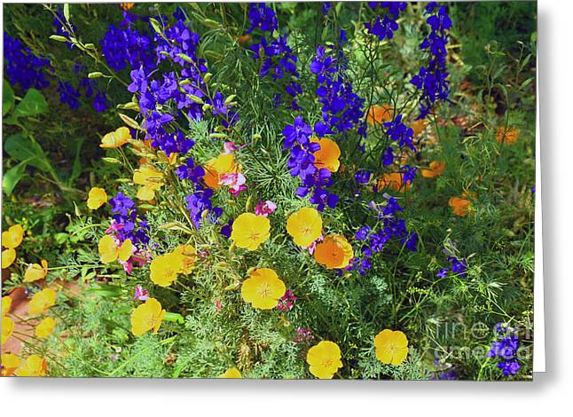 Larkspur And Primrose Garden Greeting Card