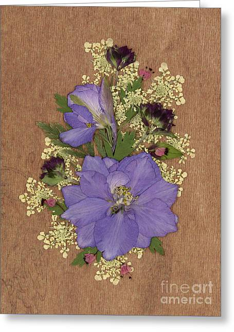 Larkspur And Queen-ann's-lace Pressed Flower Arrangement Greeting Card