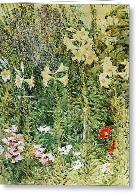 Larkspurs And Lillies, 1893 Greeting Card