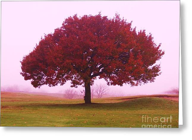 Last Leaf To Fall Greeting Card by Dennis Curry