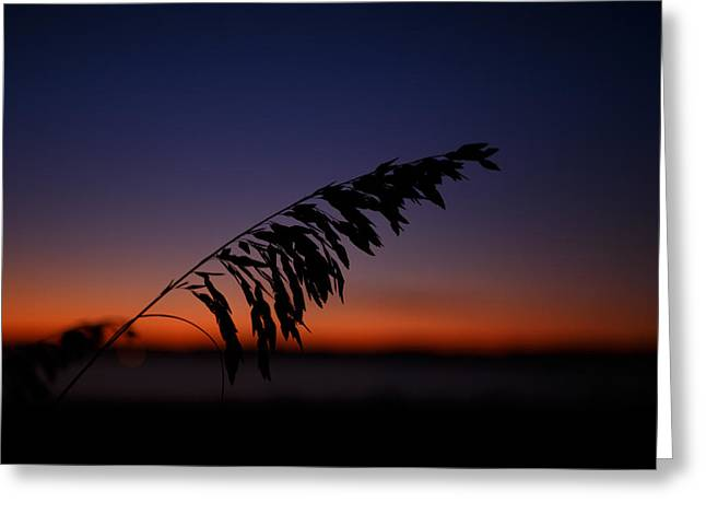 last light at Hilton Head Island Greeting Card