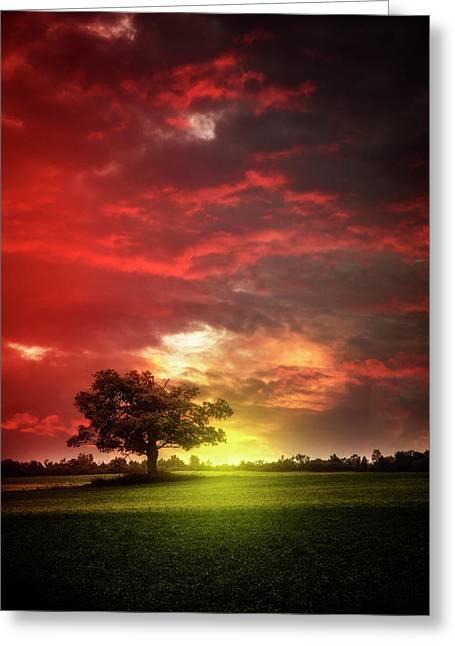 Last Light At Nightfall Greeting Card by Debra and Dave Vanderlaan