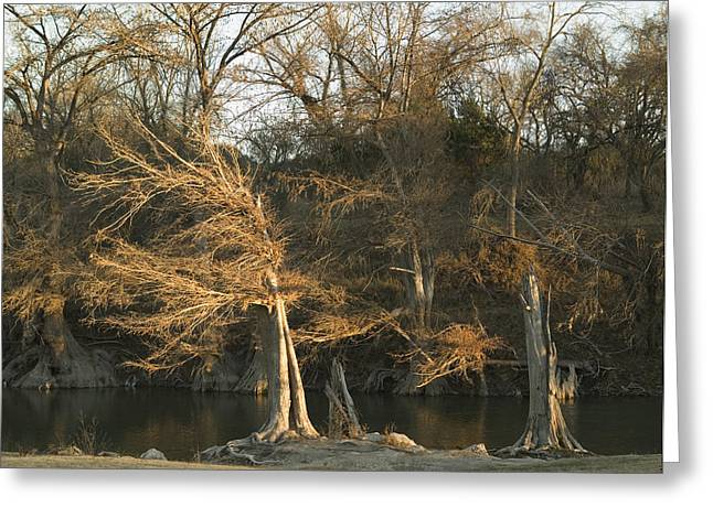 Last Light Greeting Card by Clyde Replogle