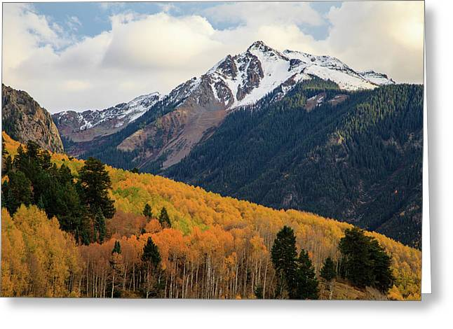 Greeting Card featuring the photograph Last Light Of Autumn by David Chandler