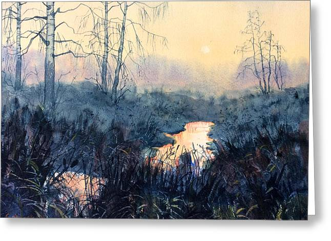 Last Light On Skipwith Marshes Greeting Card