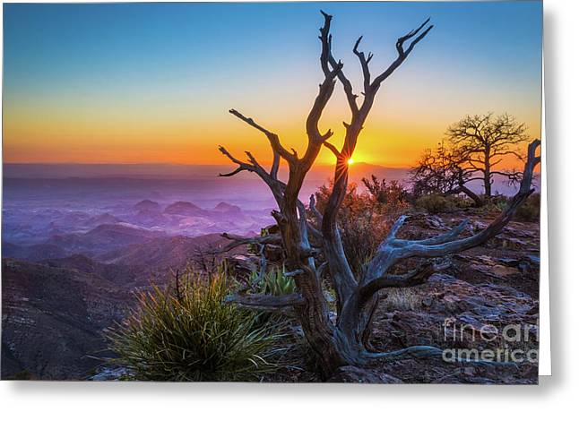 Last Light On The South Rim Greeting Card