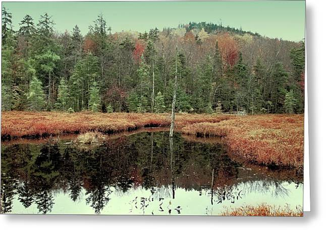 Greeting Card featuring the photograph Last Of Autumn On Fly Pond by David Patterson